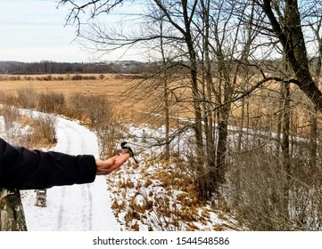 Chickadee sitting on outstretched hand on snow covered trail with fields in background