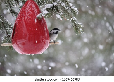 A chickadee sitting on the perch of a bird feeder during a snow storm