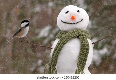 The Chickadee and the Snowman