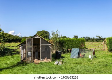 A chicken coop in the garden of a country house