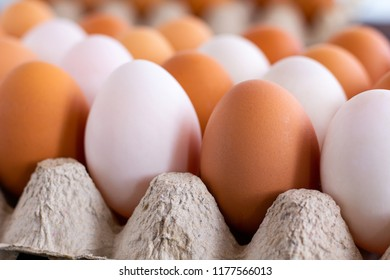 Chicken and Duck Eggs in paper tray.