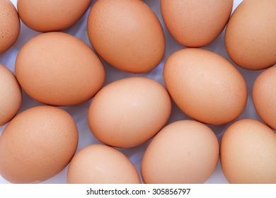 Chicken egg background full frame.
