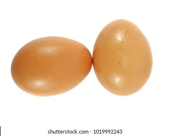 Chicken egg with isolated white background
