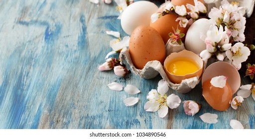 Chicken eggs and almond flowers on  a blue wooden background