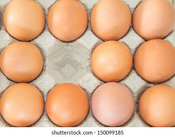 Chicken eggs in an egg carton.
