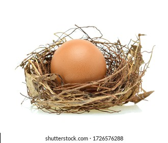 Chicken eggs in the nest isolated on white background.