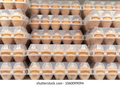 Chicken eggs in a plastic box packing on a shelf in a supermarket store. Sale for Easter