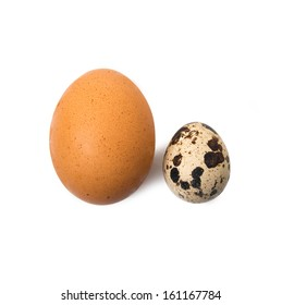 chicken eggs and quail eggs in white background