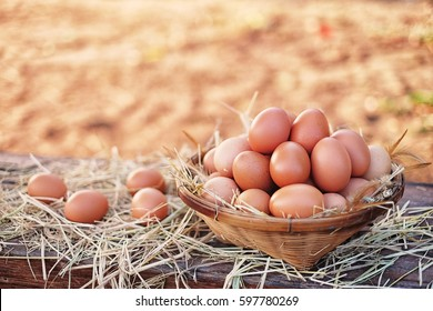 Chicken eggs quality organic in bamboo basket. Food are useful and contain many nutrients that are essential to the body.  Soft focus and blur background.