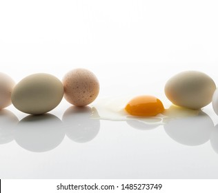 Chicken Eggs of Various Colors on White Background