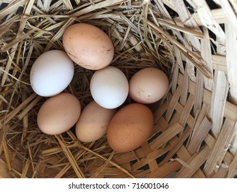 Chicken hen eggs different sizes and colors in bamboo basket