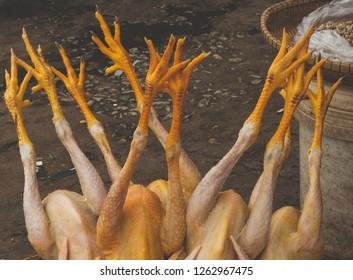 Chicken legs dead original walk shaking nails fingernail shin gnarled bumps carpus scrawny spurs feet pelt stride killed scaly unguis slain hooked tenon bony trample cooled down.
