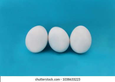 chicken white eggs isolated on blue background