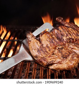 Chicken Whole Grilled On Hot Barbecue Charcoal Flaming Grill. Juicy Chicken Meat Roasted on BBQ Grill. Backyard Grill Party Dish From Poultry Isolated On Black Background, Closeup View.