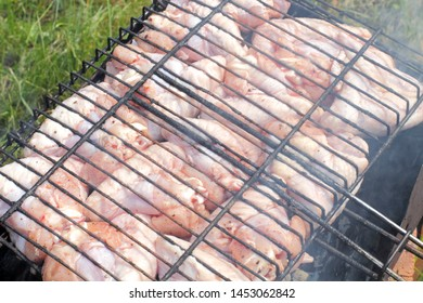 Chicken wings marinated on barbecue grill in field conditions, bright sunlight, high contrast, natural colors.