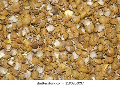 The chickpea/ chick pea (Cicer arietinum) pigmented (tan to black) seed coats. Its different types are variously known as gram, Bengal gram, garbanzo, garbanzo bean, Egyptian pea,seeds are high protin