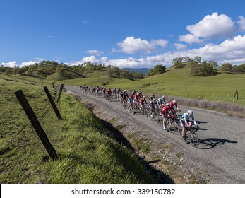 CHICO, CALIFORNIA, USA - FEBRUARY 28, 2015: Pro/1/2 Category peloton during the road race stage at the Chico Stage Race in Northern California. Public event.