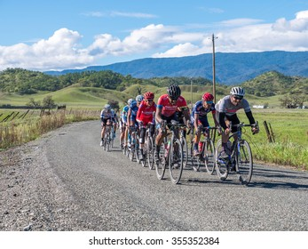 CHICO, CALIFORNIA, USA - FEBRUARY 28, 2015: Pro/1/2 Category racers during the road race stage at the Chico Stage Race in Northern California. Public event.