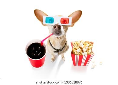 chihuahua dog se rendant au cinéma avec soda et lunettes et pop-corn et billets, isolé sur fond blanc et lunettes 3d