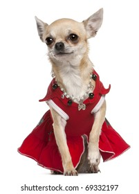 Chihuahua dressed in red dress and necklace sitting in front of white background