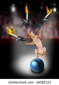 a chihuahua juggling three chainsaws