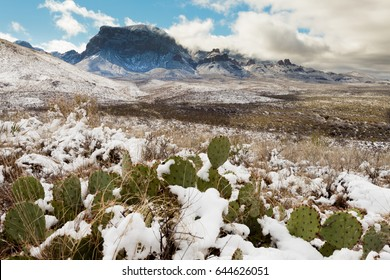Chihuahuan Wüstenschnee und Chisos Mountains im Big Bend National Park, Texas, USA