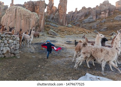 Child of the Andes of Peru, plays with his lamas and his flag. June 12, 2017, Huayllay Peru