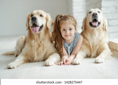 A child with an animal. Little girl with a dog at home.