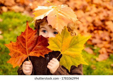 Child with autumn leaves as glasses in warm jacket in nature - Shutterstock ID 1781062994