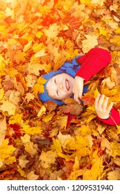 Child in autumn park. Happy adorable boy with fall leaves. The concept of childhood, family and kid laughs outdoors.