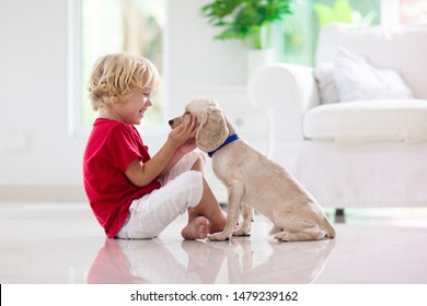 Child with baby dog. Kids play with puppy. Little boy and American cocker spaniel at couch. Pet at home. Animal care.