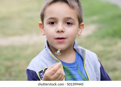 child blowing on dandelion