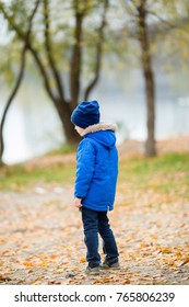 A child in a blue jacket and a dark blue hat is standing on the street, standing with his back to us. Autumn. close-up