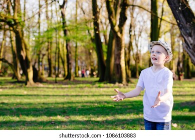 Child boy catching ball on green grass in park. Happy family in the park