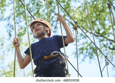 Child boy enjoys climbing in the ropes course adventure. Child engaged climbing high wire park. Active brave little boy enjoying climbing at treetop adventure park