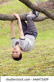 Child boy hanging upside down on a tree branch in a park.