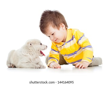 child boy playing with puppy dog