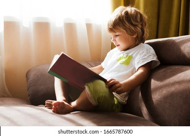 Child boy reading a book sitting  on the sofa
