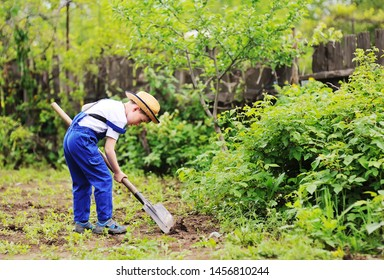 child boy in a straw hat and a blue jumpsuit gardener digs a shovel garden. Space for text, copy space.