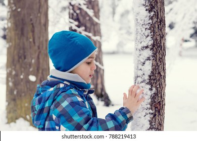 Child boy touching fresh snow on a tree trunk in a park or foresrt
