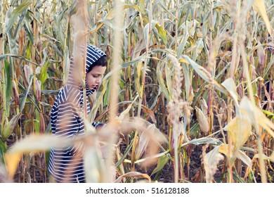 Child boy walking in a corn field in autumn