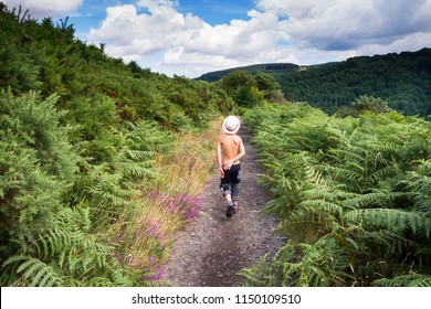 Child boy walking on a path in nature on a hot summer day, back view, Dartmoor, England, Uk
