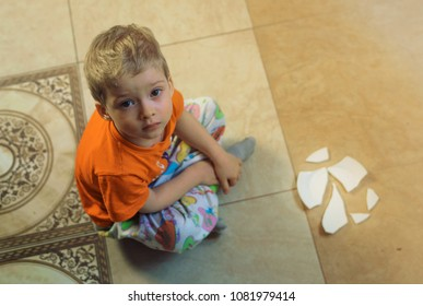 the child broke broke the dishes. dropped on the floor. little brat