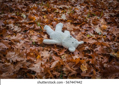 Child care concept. Shabby white teddy bear lies alone in the park on the dry brown leaves.
