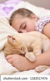Child with cat sleep on the bed
