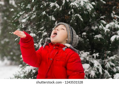 The child catches snowflakes on the tongue. The boy catches snow on the palm. Outdoor. Winter. Snow. Cold.