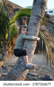 Child climbing palm tree travelling at sunset at the beach