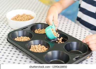 Child development- Montessori activity: Hands-on activities that involve sensory based learning materials. A child scooping dry beans from a bowl and put it into a cupcake muffin mold.