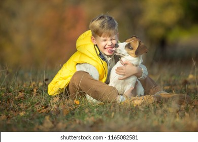Child with dog in autumn