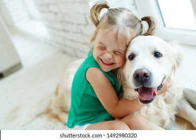 A child with a dog. Girl with a Labrador at home.